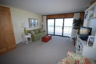 Living Room - 2 Virginia Ave #206