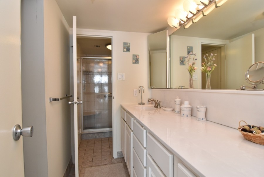 Vanity and Dressing Area